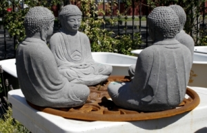 Buddha Board Meeting